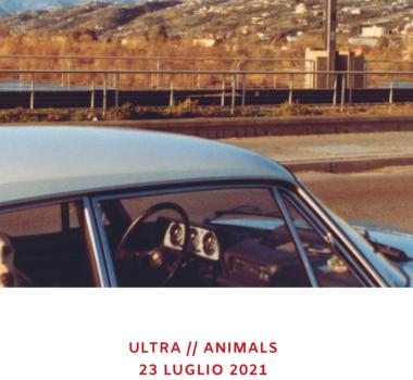 ultra animals